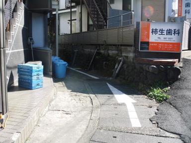 麻生川大ヶ谷戸支流(仮)