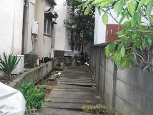 石神井川風呂釜支流(仮)