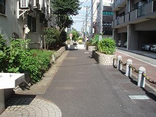 Momo46