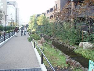 Meguro1