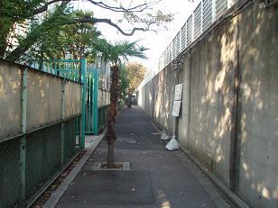 Mikawa21