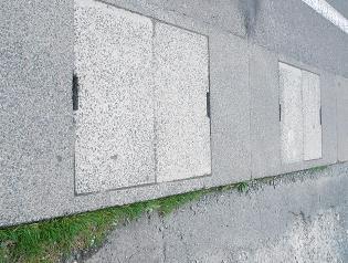 Iwatesokko1_2