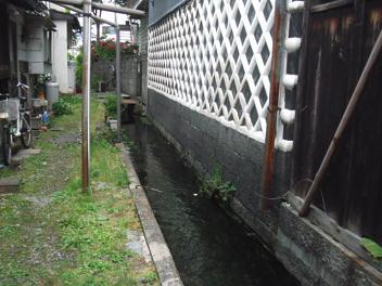 Matsu48