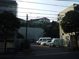 Kiku30