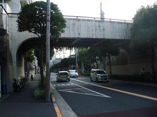 Kiku34