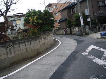 Kaji24