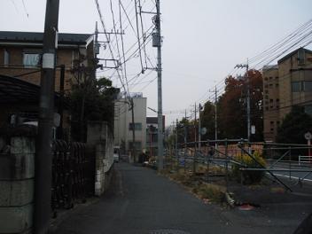 Kaji33_2