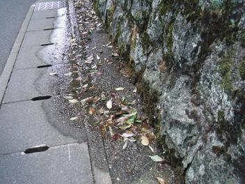Kyoto20_2