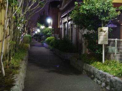 Tanaka5