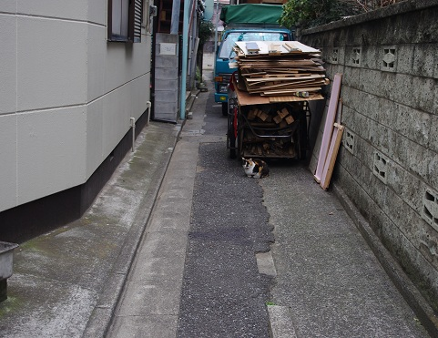 http://kaeru.moe-nifty.com/photos/uncategorized/2012/03/04/sak26.jpg