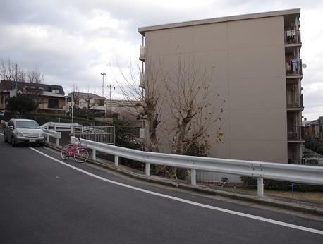 Shoji35