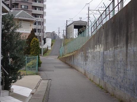 Shoji7