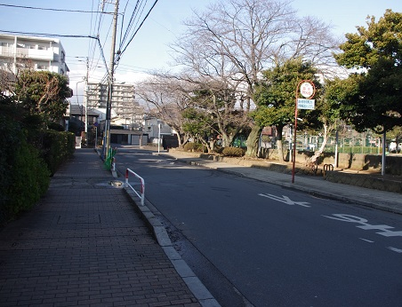 Honkai28