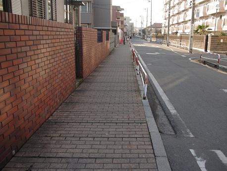 Honkai31