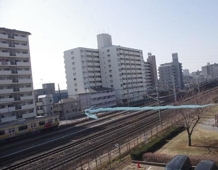 Gyo46