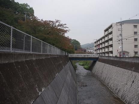 Kobe8