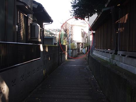 Saku013